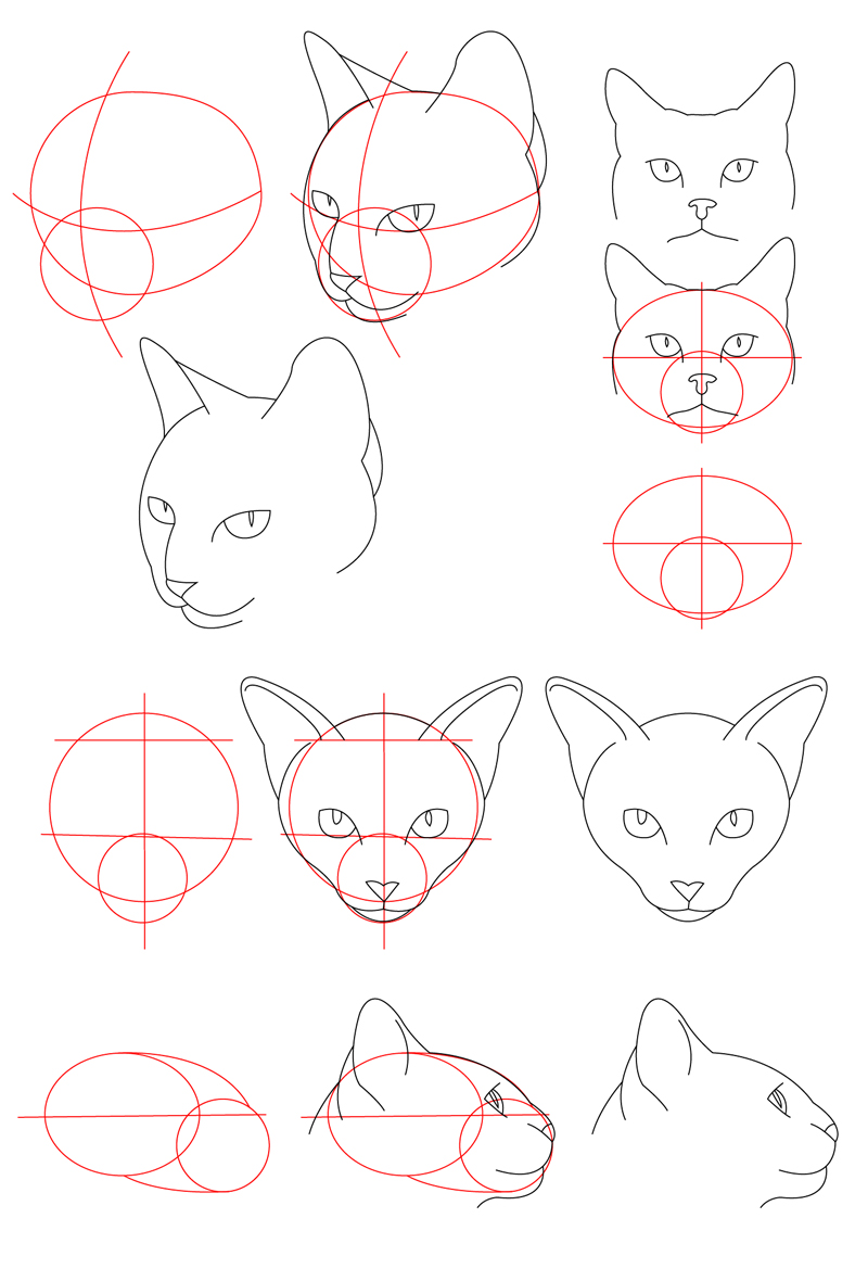 how to draw easy kids ears