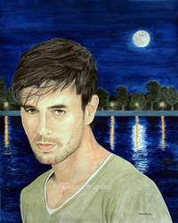 Enrique Iglesias - Silver Moon by traciewayling