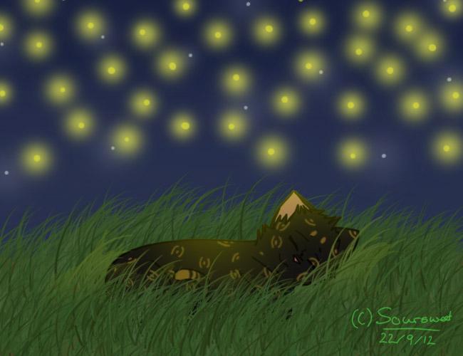 Sleeping under fireflies by Soursweetx