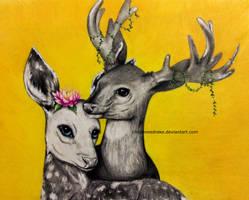 deer and doe. [2015] by CheyenneDrake