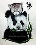 pandas. [2015]