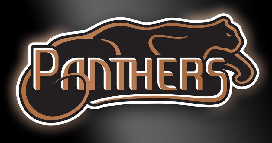 Panthers Basketball Logo Panthers Basketball Logo by