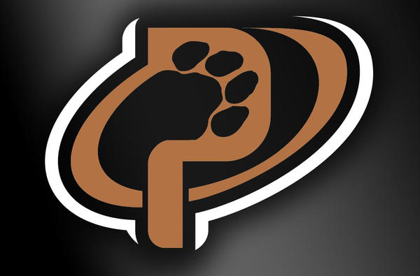 Panthers Basketball Logo Panthers Basketball Alt Logo