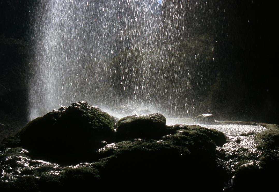 desert rain by Ninheve