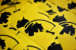Chasing Bones Sticker Pack