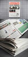 'The Lowdown Times' Newspaper