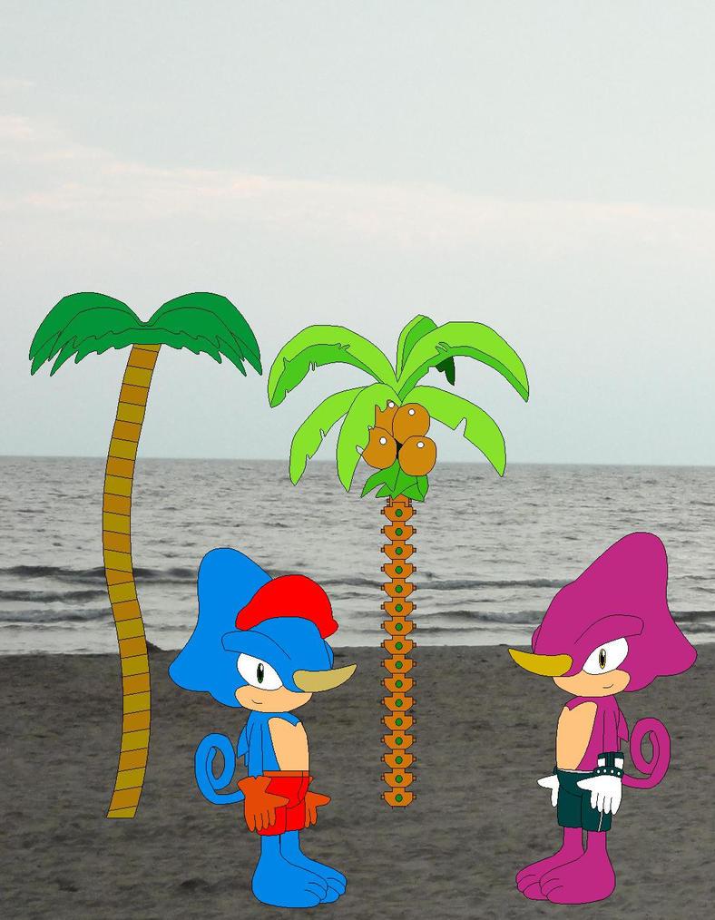 Espio and Valdez on the beach by YRT9401