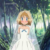 Serena Wedding Dress by Jamesvelectric