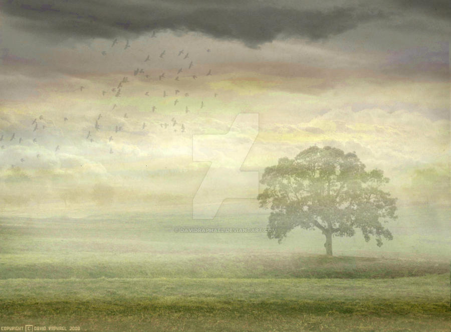 Genesis - Wind and Wuthering by davidraphael