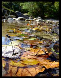 Autumn Lovin' by GeodeLady