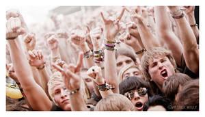 the crowd II