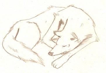 Sleep by she0wolf