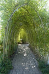 Natural Tunnel Stock