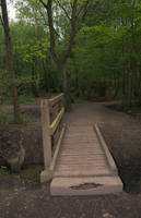Bridge to woods by Sassy-Stock