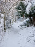 Snow scape Stock 3