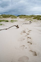Scottish beach stock 3 by Sassy-Stock