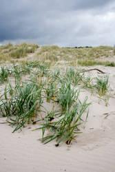 Scottish beach stock 2 by Sassy-Stock
