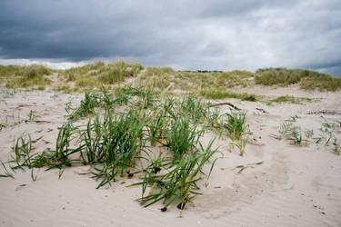 Scottish beach stock 1 by Sassy-Stock