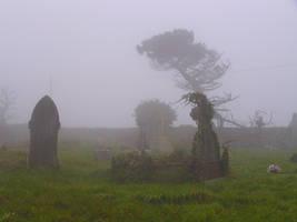 Foggy Graveyard by Sassy-Stock