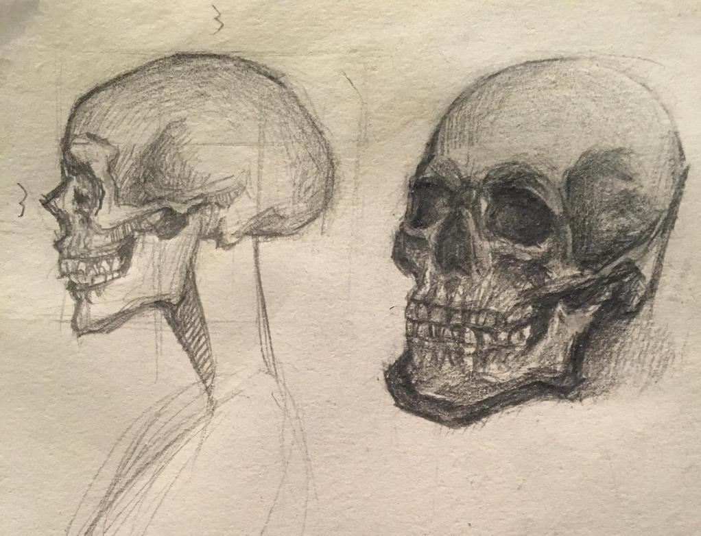 skull practice by Killchick