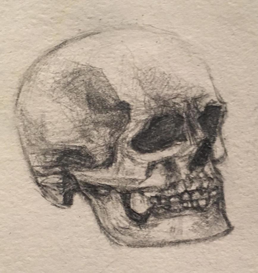 more skulls going on by Killchick