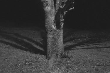Solitude by Danyasaur