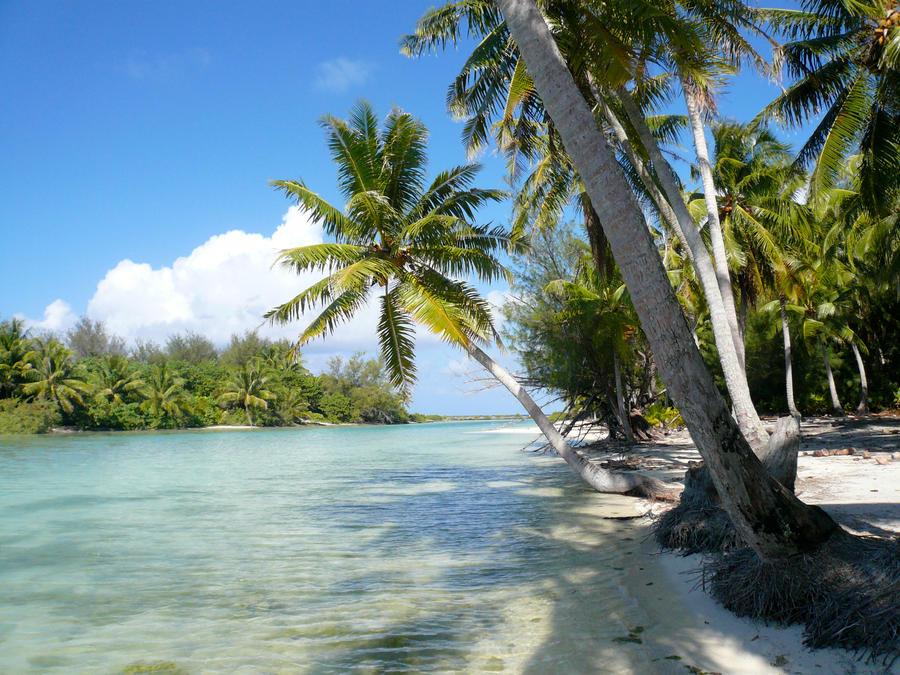 Bora Bora N.1 by EatBones