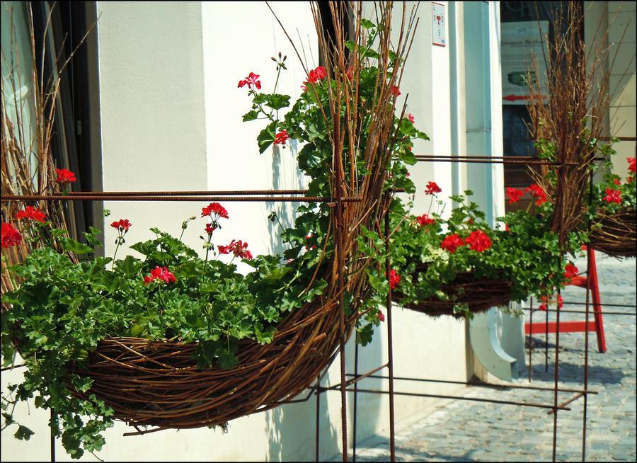 red swings by VasiDgallery