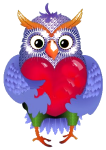 owl with heart 1 by VDragosPhotography