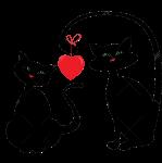 Love Cats by VasiDragos