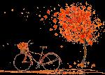 Autumn by VDragosPhotography