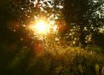 When the sun quietly go down