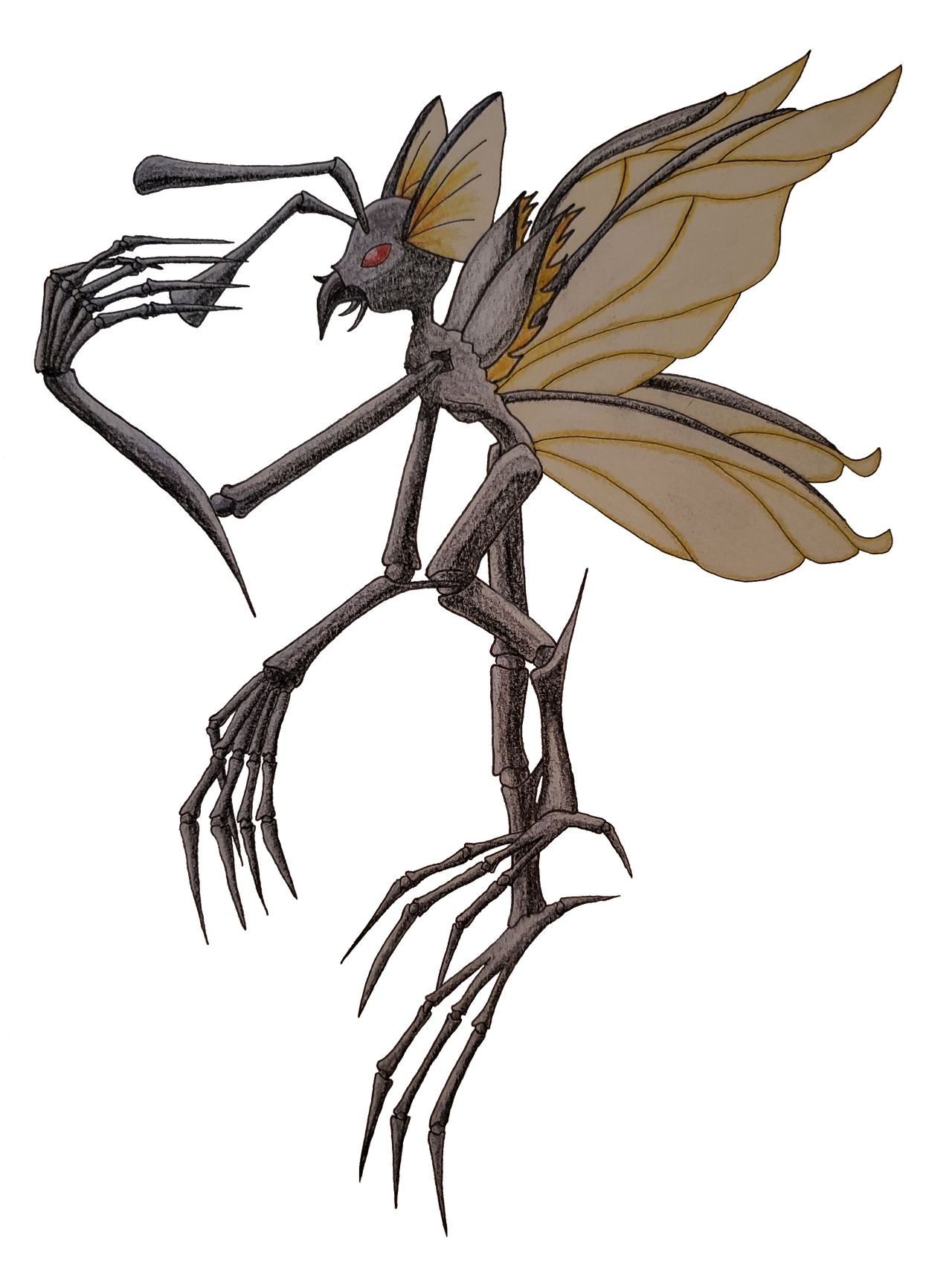 Insect Faerie By Lunaoctoberwolf On Deviantart