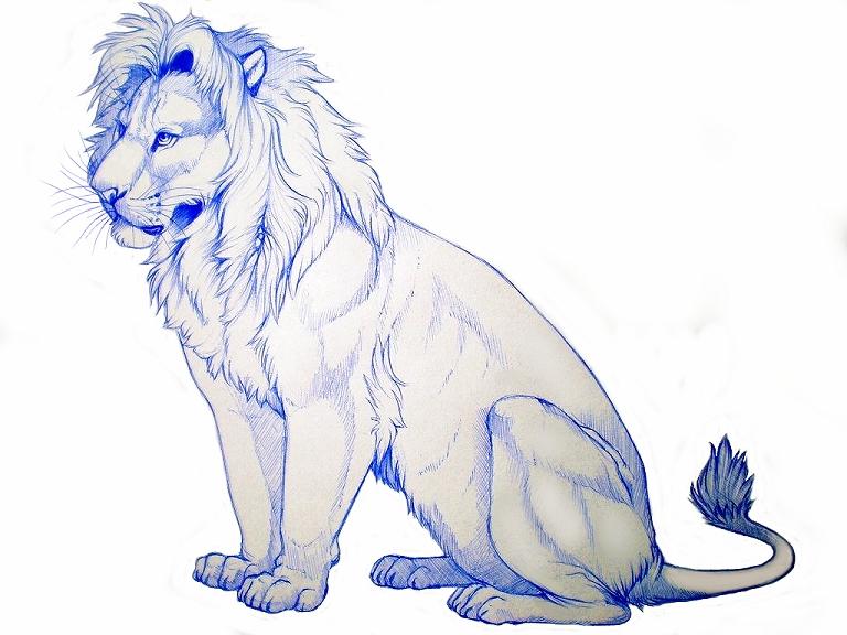 Simba Pen Drawing