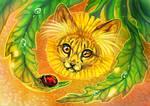Catsear