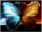 good vs evil butterfly