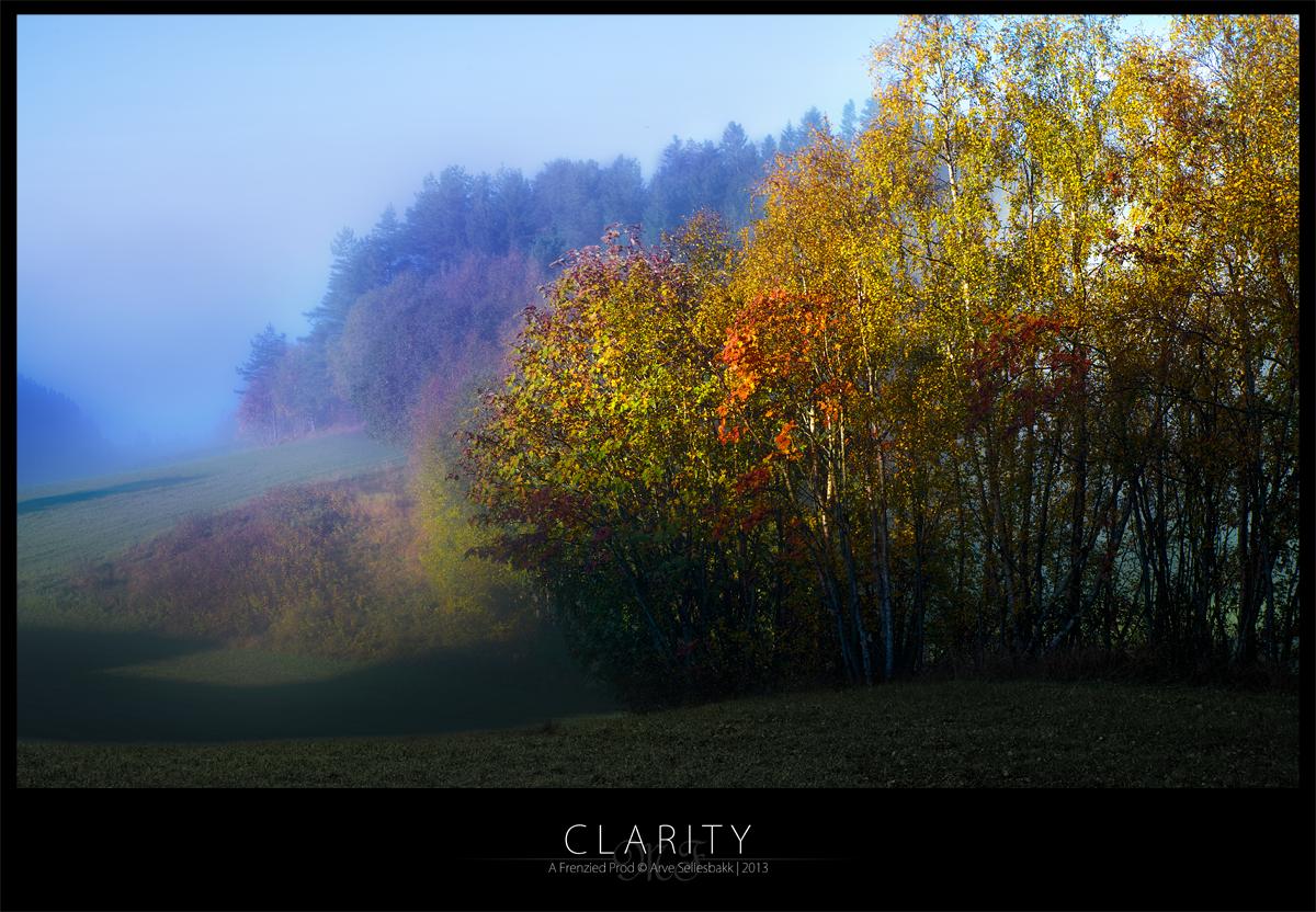 Clarity by Mr-Frenzy