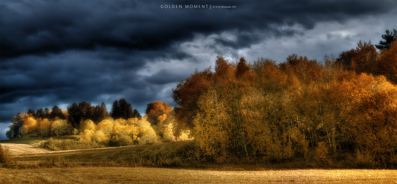 Golden Moment by Mr-Frenzy