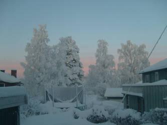 Winter In Norway 2010