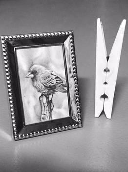Tiny Bird Drawing (6.5cm tall frame)