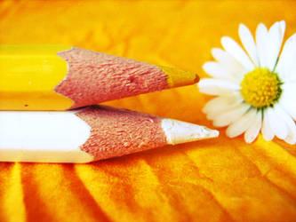Color Me Daisy by MateaLoncar