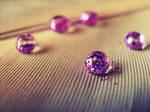 Glitter Drop