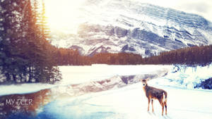 My Deer by Pincons