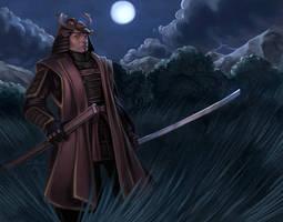 Samurai by DanMasso