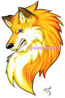 Fox logo by FiareFox
