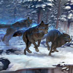 Enchanted Dire Wolf