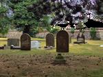 Graveyard Stock PNG