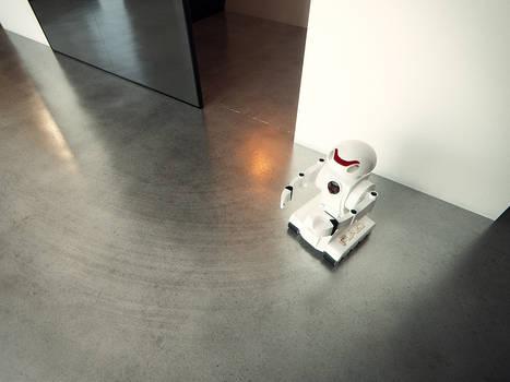 P_Robot Top