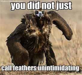 Anti-Jurassic Park Vulture