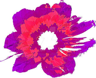 Pink and Purple Flower